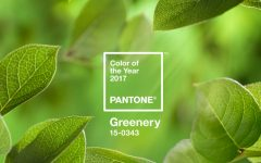 Pantone Color of the Year for 2017 Is Everything We All Need pantone color of the year Pantone Color of the Year for 2017 Is Everything We All Need Pantones Color of the Year for 2017 Is Everything You Might Wish For 1 feat 240x150