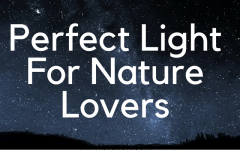 Perfect Light For Nature Lovers modern floor lamps Nature Lovers These Are The Modern Floor Lamps For You! Perfect Light For Nature Lovers 240x150